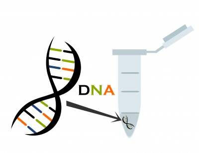 free genetic ancestry test