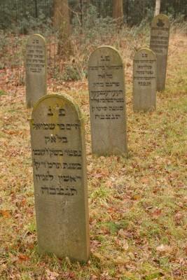 Tracing your Jewish Genealogy Family Tree